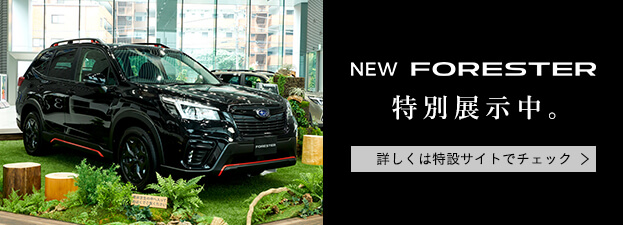 NEW FORESTER STUDIO